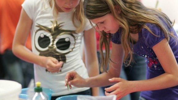 Im METEUM in Treptow können Kinder und Jugendliche die Faszination der Naturwissenschaften entdecken.