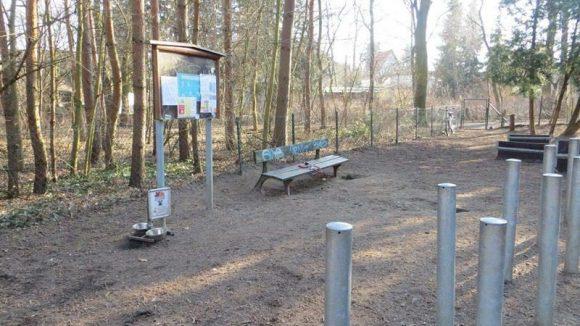 Eher langweilig geht es dagegen im Hundegarten im Steinbergpark ...