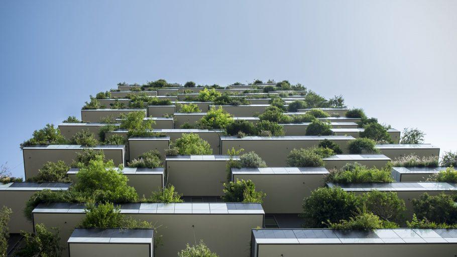 Ob es im neuen Modellprojekt in Moabit bald so grün sein wird?