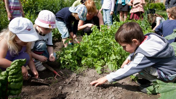 Beim Gärtnern lernen die Kinder spielerisch die Natur kennen. Menschen aller Altersgruppen und Nationen sind im Mehrgenerationengarten in Neukölln willkommen.