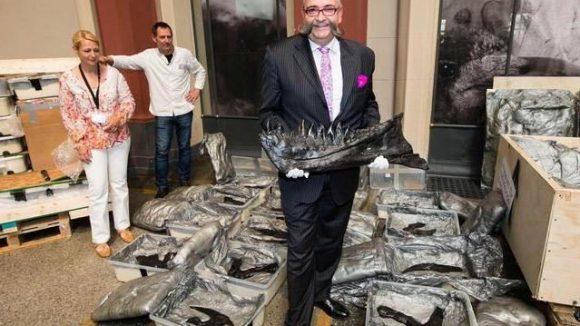 Herr der Knochen. Johannes Vogel, Chef des Berliner Naturkundemuseums, präsentiert Knochen des T. Rex. In den nächsten Wochen werden sie untersucht und zusammengefügt. Ab Dezember ist das Tier für Besucher zu sehen - oder das, was von ihm übrig geblieben ist.