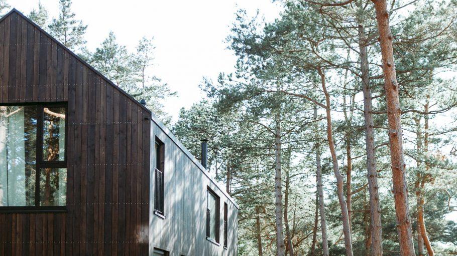 Das in Holzbauweise errichtete Newhaus greift mit seiner Ausrichtung den Verlauf der Düne auf, an der es steht.