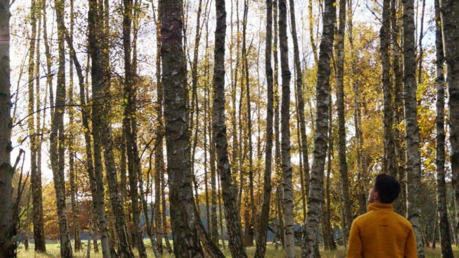 Instagramer Niko Brinkmann aka patheight im Birkenwald vom Naturpark Barnim. Er ist für ein Fotoprjekt von naturtrip.org unterwegs.