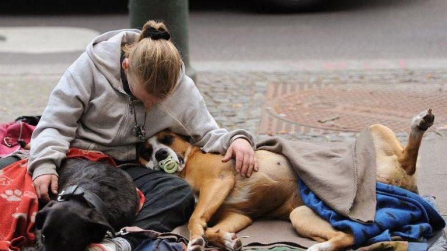 Eine Frau sitzt in Berlin mit ihren zwei Hunden am Straßenrand. In Gesundbrunnen gibt es für Frauen ohne Obdach einen würdevollen Rückzugsort.