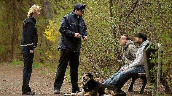 Eine der Aufgaben der Mitarbeiter des Ordnungsamts ist es, Hundehalter auf die Leinenpflicht hinzuweisen. Nicht alle zeigen sich einsichtig.