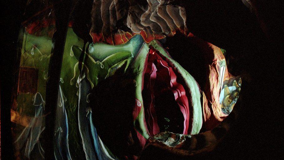 Gruselige Höhlen oder eigener Organismus?