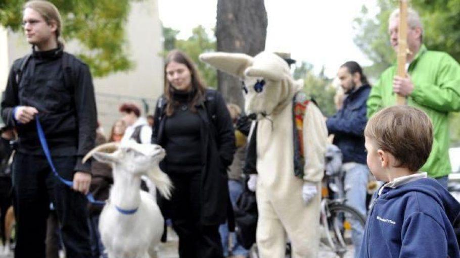 So ähnlich wie bei der Pet Parade 2008 in Neukölln könnte es auch beim Karneval der Tiere gegen rechts in Köpenick aussehen. Die Mitnahme von echten Tieren ist allerdings nicht geplant.