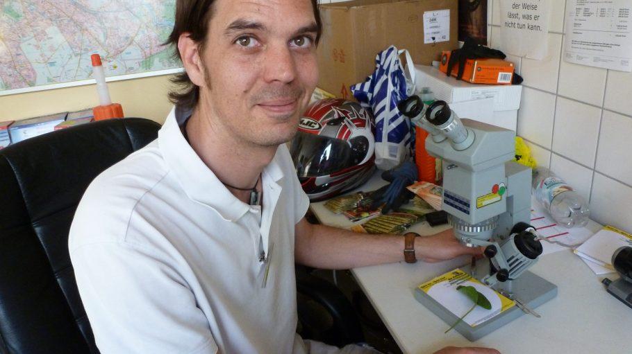 Sieht in seiner weißen Arbeitskleidung wie ein richtiger Doktor aus - Jenne Packwitz bei der Arbeit. Der Blick durch das Mikroskop kann eine Pflanzenkrankheit genauer spezifizieren.