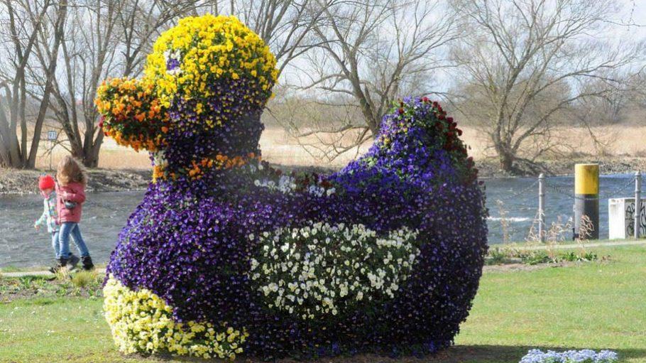 Diese bepflanzte Ente steht bereits an der Uferpromenade von Premnitz.