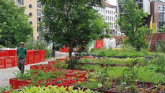 Urban Gardening für alle: Der Prinzessinnengarten in Kreuzberg ist offen für jeden Hobbygärtner, der legale Pflanzen und Gemüse anbauen möchte.