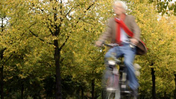 Künftig können einige Parkanlagen Berlins mit dem Rad durchquert werden.