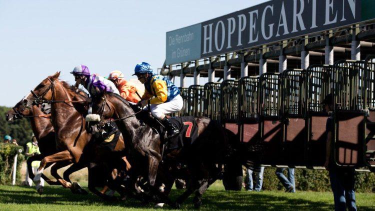Die Saison ist eröffnet: Die Pferde laufen wieder auf der Hoppegarten-Rennbahn.