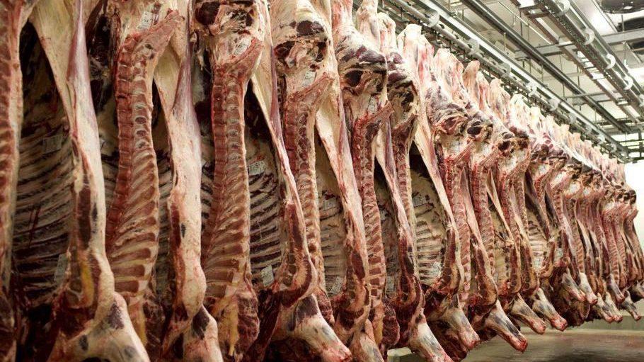 Am laufenden Band, 24 Stunden täglich, soll in der Fabrik Fleisch von Rind, Lamm, Kalb und Geflügel angeliefert, verarbeitet und ausgeliefert werden.