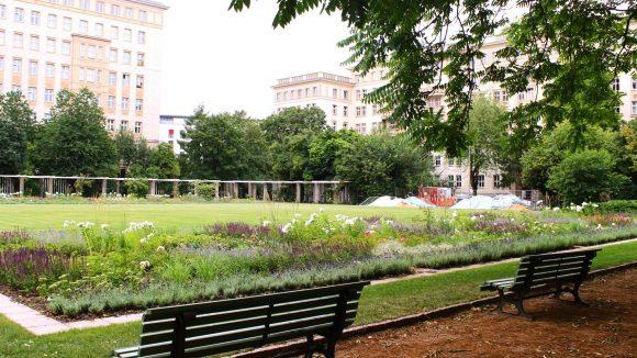 Noch ist der Rosengarten nicht ganz fertig und trotzdem schohn ein schönes Stück Grün zwischen den Stalinbauten.