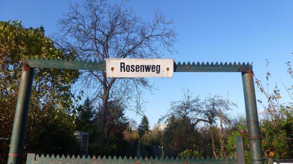 Der Rosenweg in der Kolonie Johannisberg am Rüdesheimer Platz.