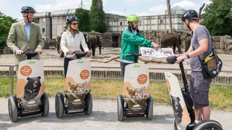 Kurzer Infostopp: Hier wird was vom Elefanten erzählt. Dabei weiß Tierparkdirektor Andreas Knieriem (links) auch ohne Tourguide bestens über die Parkbewohner bescheid.