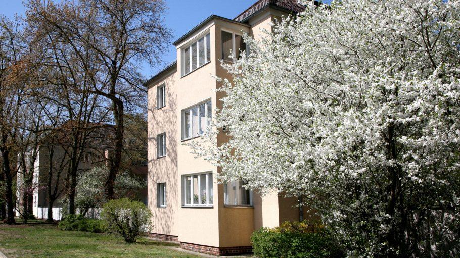 Die Großsiedlung Siemensstadt in Charlottenburg ist eine einmalige Wohnanlage.