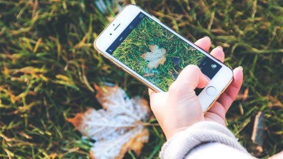 Ein kurzer Schnappschuss mit dem Smartphone und dann ab zu Instagram.