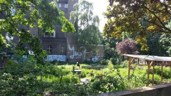 """Projekte wie """"Ton, Steine, Gärten - Nachbarschaftsgarten am Mariannenplatz"""" schaffen im urbanen Raum grüne Oasen."""
