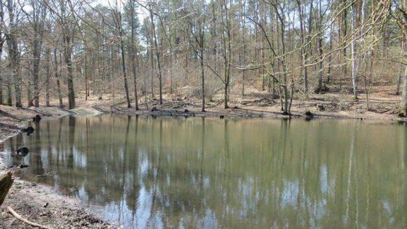 Abgesehen vom großen See gibt es auch dieses kleine, namenlose Gewässer zum Planschen.