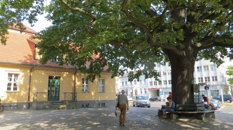 Rund um die Zehlendorfer Eiche zeigt sich der Ortsteil von einer wirklich schönen Seite. Für mehr Bilder - klick' dich durch!