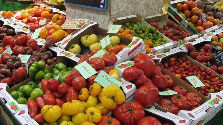 Von wegen immer nur rot und rund: Tomatenvielfalt auf einem Markt.