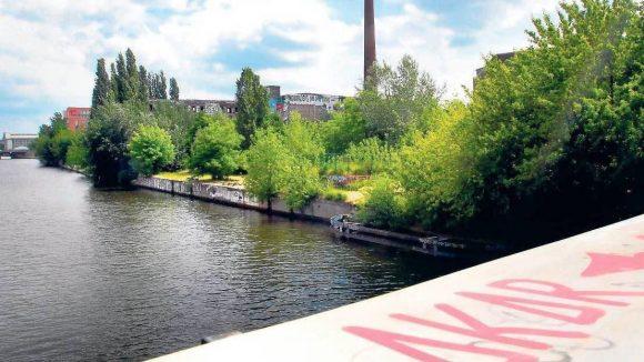 Am Ufer wuchert's. Hier soll die neue Promenade an der Spree gebaut werden.Das Foto entstand auf der Michaelkirchbrücke mit Blick gen Süden.