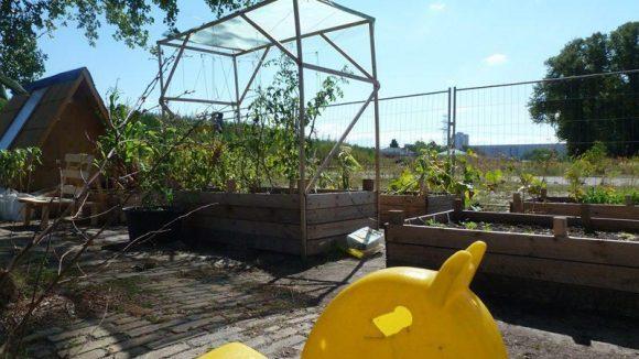 Typisch urbaner Garten. Unkonventionell und für alle. Kleine und große Pflanzen, kleine und große Menschen.