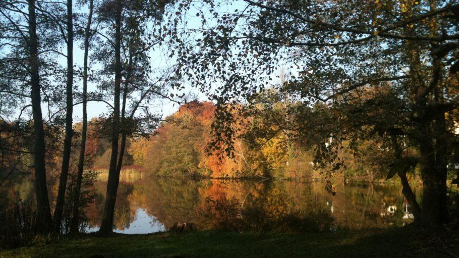 Auch im Herbst schön: der Waldsee in Hermsdorf.