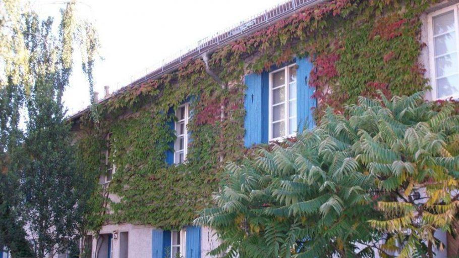 Eine der Fassaden in der Waldsiedlung.