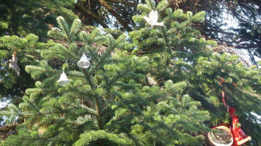 Privatschmuck für den Baum an der Gedächtniskirche