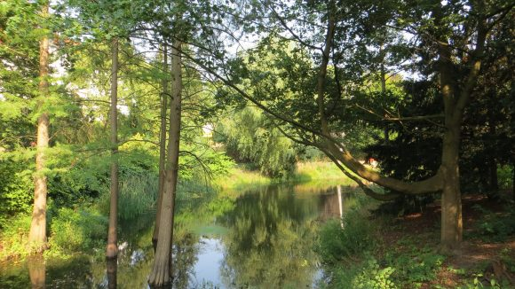 Idyllisch: der Wilhelmsteich im Lehnepark.
