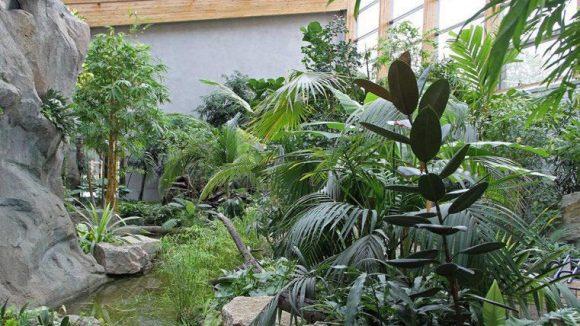Die Freiflughalle für südostasiatische Vogelarten.