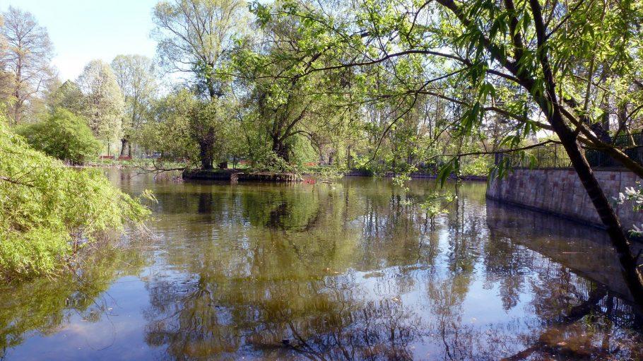 Auf den ersten Blick sieht der Park mit seiner kleinen Teichanlage herrlich idyllisch aus. Klick dich durch die Bilder um zu sehen, was an der Anlage bemängelt wird.