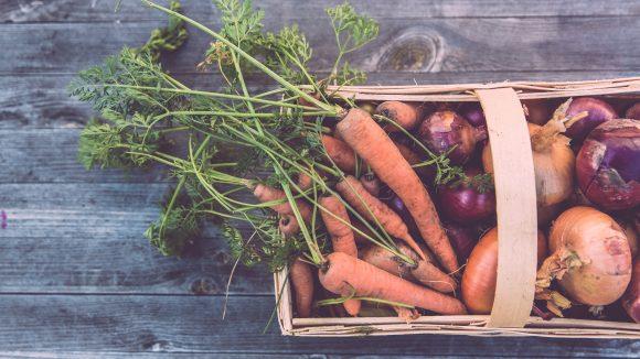 Frisch vom lokalen Bauernmarkt schmeckt Obst und Gemüse am besten– gerade für Städter ist das aber schwierig zu bekommen.