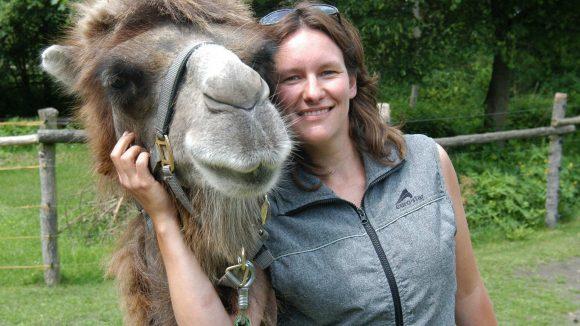 Auf Tuchfühlung mit haarigen Kamelen: Auf dem Fleckschnupphof können die Exoten hautnah erlebt werden.