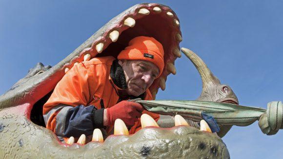 Ein Arbeiter steckt im Maul eines lebensgroß nachgebildeten Raubdinosaurier-Modells und zieht am Endstück eines Taus.
