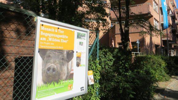 In Schmargendorf gibt es eine neue Anlaufstelle für Tierliebhaber.