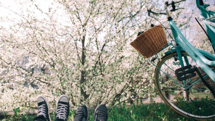Bei strahlendem Sonnenschein ist so eine Fahrradtour ins Grüne genau das Richtige.