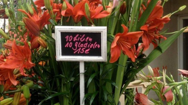 Die Blumenjägerin Iris Schüttken vor ihrem Laden.