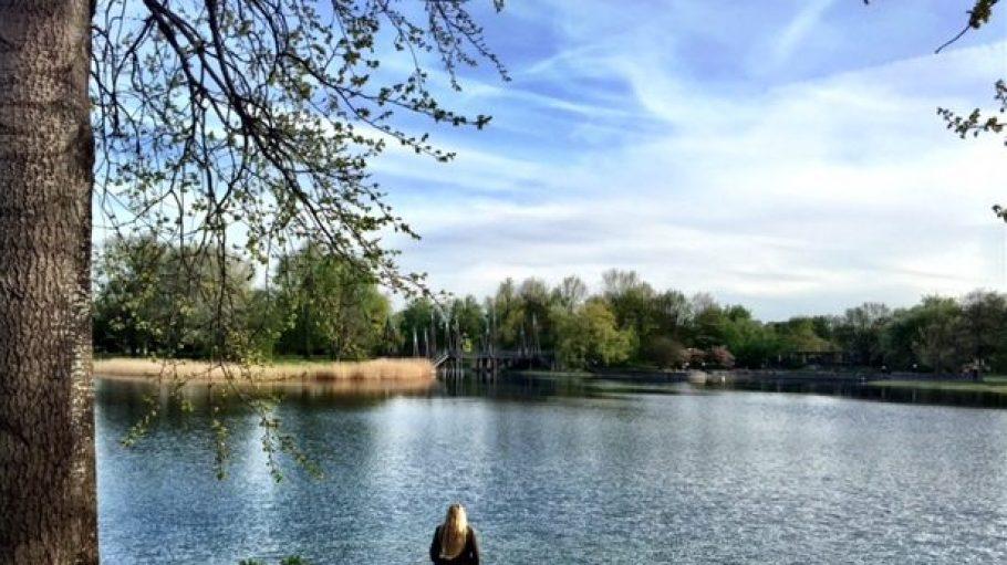Gerlinde Jänicke hat sich für uns im Britzer Garten umgeschaut - und dabei auch nach den Freunden von Alice im Wunderland Ausschau gehalten.