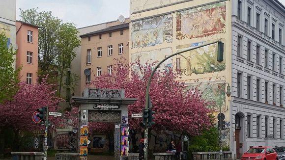 Hauser und Bäume in der Adalbertstraße in Kreuzberg.