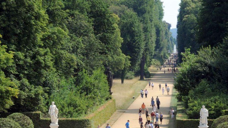 Der Park Sanssouci zieht jedes Jahr Touristen aus aller Welt nach Potsdam und ist wohl einer der schönsten Plätze der Stadt.