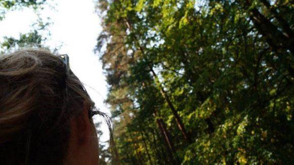 Die Stille im Wald ist wunderbar! ©naturtrip.org