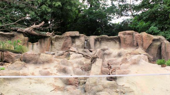 Diese Nordamerika-Landschaft ist das neue zu Hause für Baumstachler und Präriehunde im Tierpark.