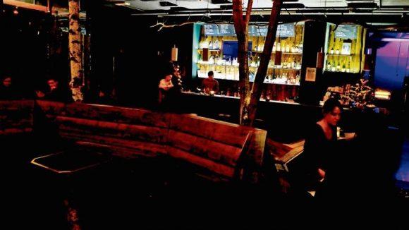 Blick auf die Theke der Baumhaus Bar