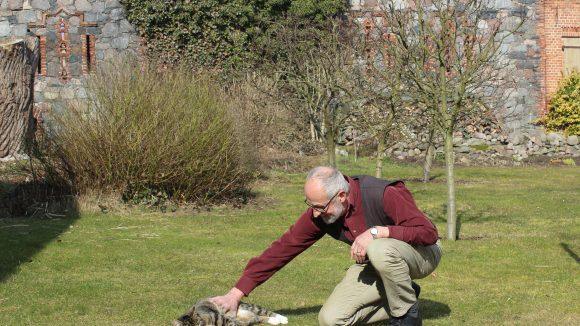 Einen kleinen Tiger hat Reiner Zieger auch im Garten.