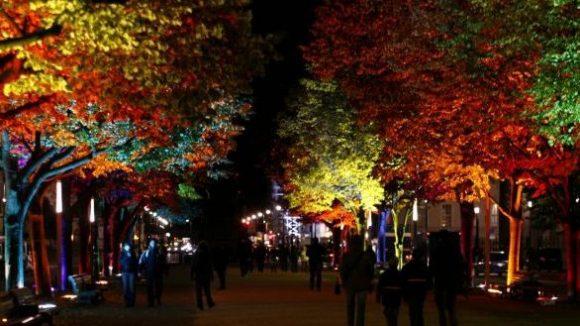 Passanten genießen beim alljährlichen Festival of Lights im Oktober den Spaziergang unter den märchenhaft beleuchteten Bäumen Unter den Linden.