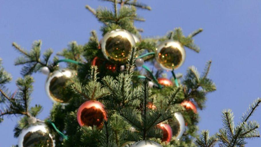 Highlight in jedem weihnachtlichen Wohnzimmer: der festlich geschmückte Tannenbaum.