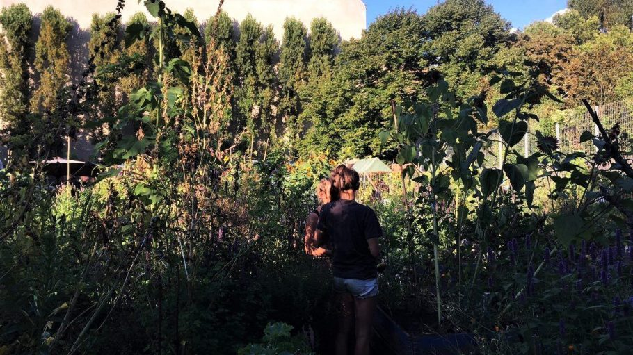 Die Gartenarbeit, wie hier im Himmelbeet, macht glücklich, denn der Kreativität werden keine Grenzen gesetzt.